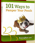 101 Ways to Pamper Your Pooch ebook